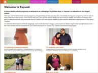 Screebshot of Tapuaki website homepage