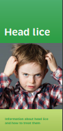 Headlice brochure