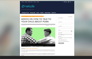 Netsafe website