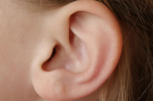 A child's ear